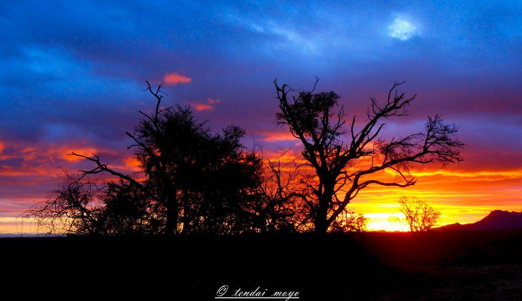 Beautiful Sunsets at Samara