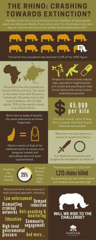 Rhino infographic hi res JPEG