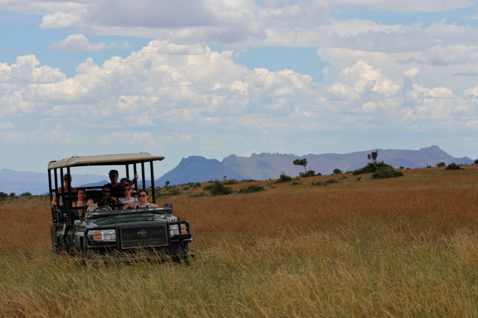 Game drive on the Samara Mara, Samara Private Game Reserve, Great Karoo, South Africa