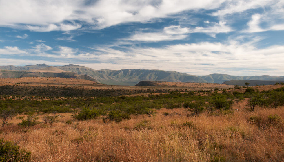 Samara Mara, Samara Private Game Reserve, Great Karoo, South Africa