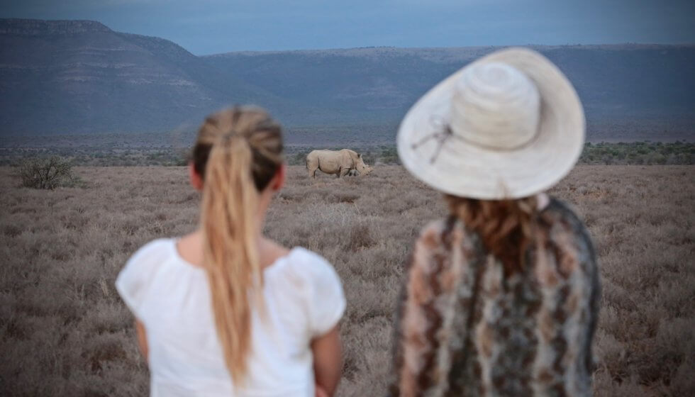 Viewing White rhino on foot, Samara Private Game Reserve, Great Karoo, South Africa
