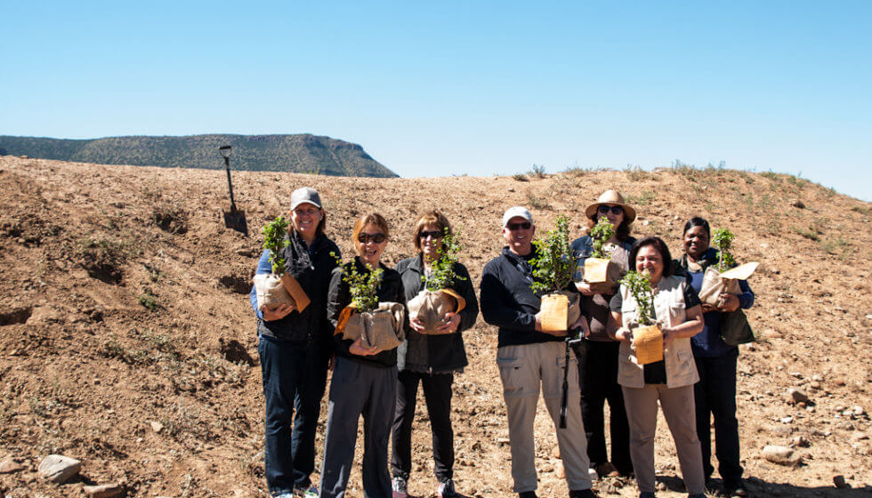 Spekboom planting, Samara Private Game Reserve, Great Karoo, South Africa